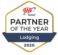 2020 AAA Partner of the year